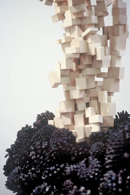 Pinecone Stack, 2003-04, Detail